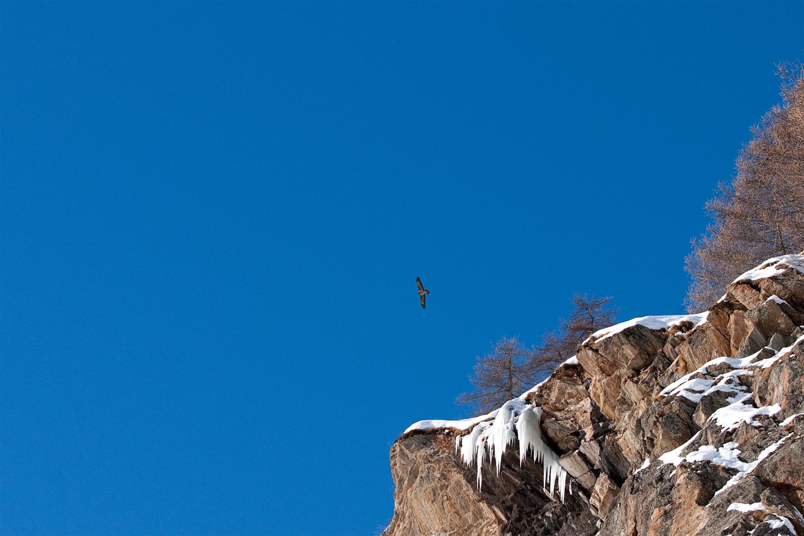 Tre metri sopra il cielo (3)