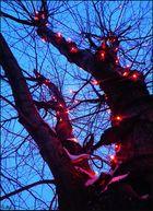 Tree of Fireflies.