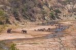 Treffpunkt Tarangire River