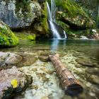 Treibholz am Wasserfall