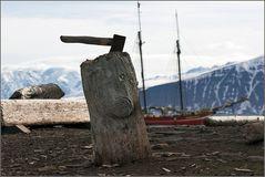 Treibholz aus Sibirien...