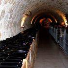Trentino wine farm