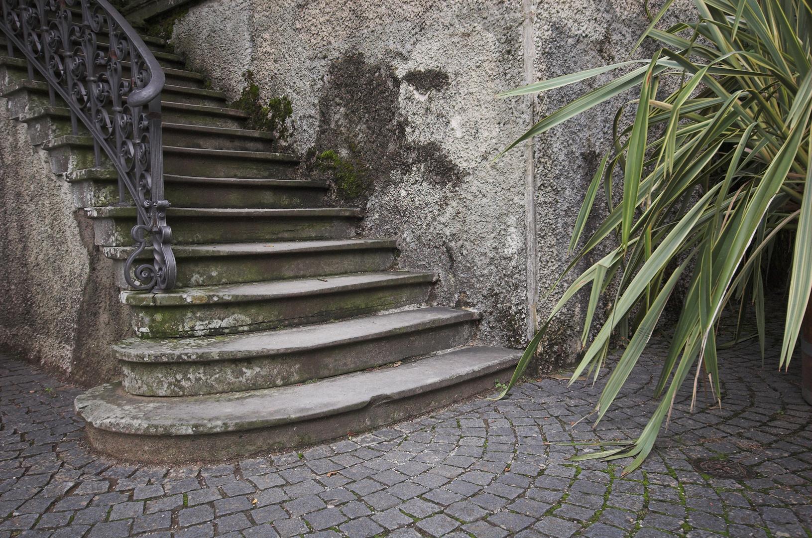 Treppe auf der Insel Mainau