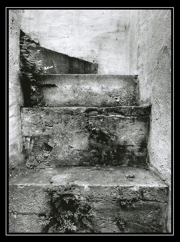 Treppe hinterm Haus