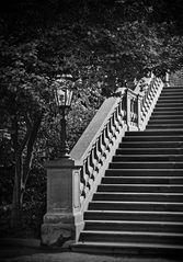 Treppe im Park (reloaded)