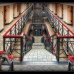 Treppe ... in die Freiheit