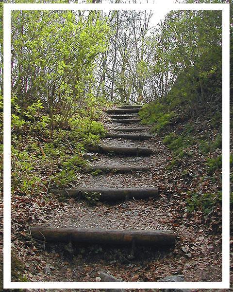 Treppe in freier Natur