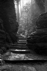 Treppe in´s Licht