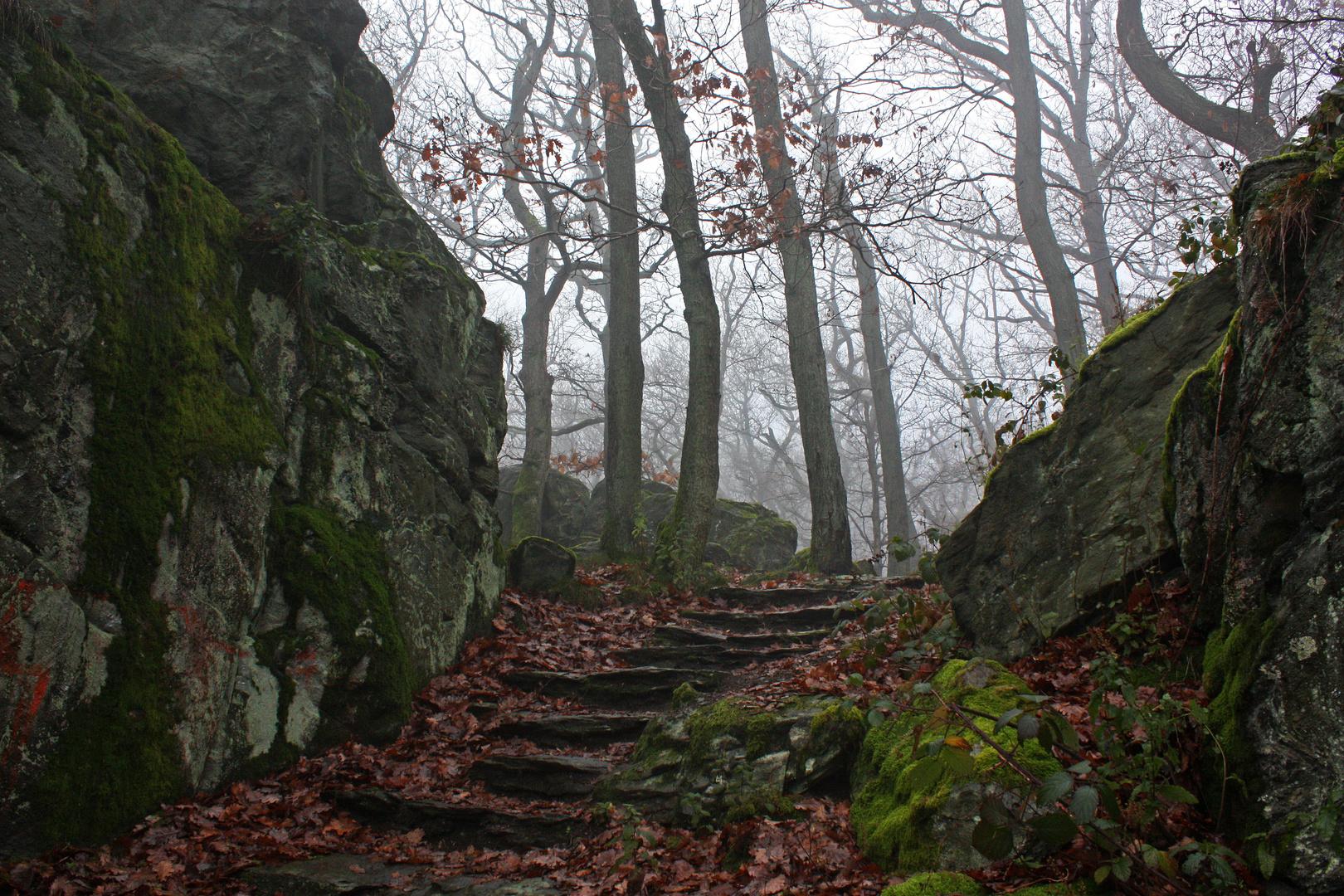 Treppe zum Moosfelsen