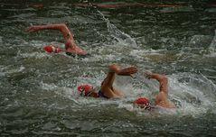 Triathlon Hamburg - Schwimmen
