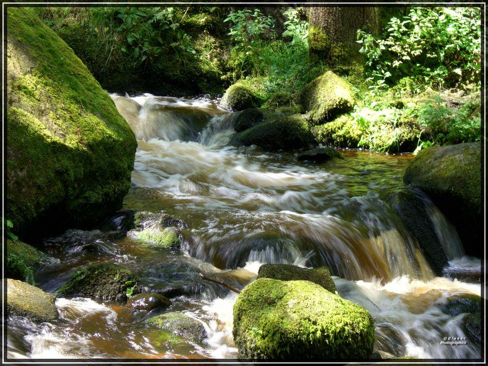 Triberger Wasserfälle / 2