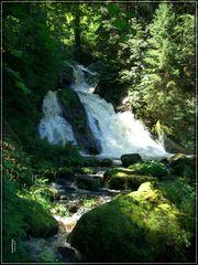 Triberger Wasserfälle / 3