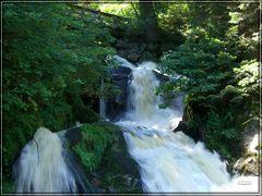 Triberger Wasserfälle / 4