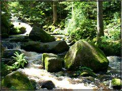 Triberger Wasserfälle / 5