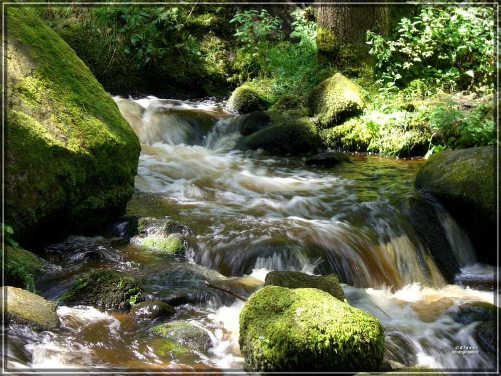 Triberger Wasserfälle / 6