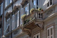 Trieste 02
