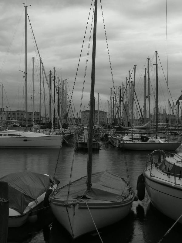 Trieste e la Barcolana