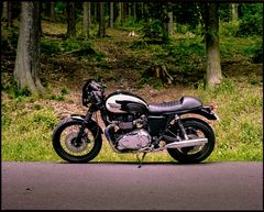 Triumph Bonneville T100 Café Racer
