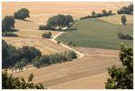 Trocken-staubiges Land - Spanienhitze...
