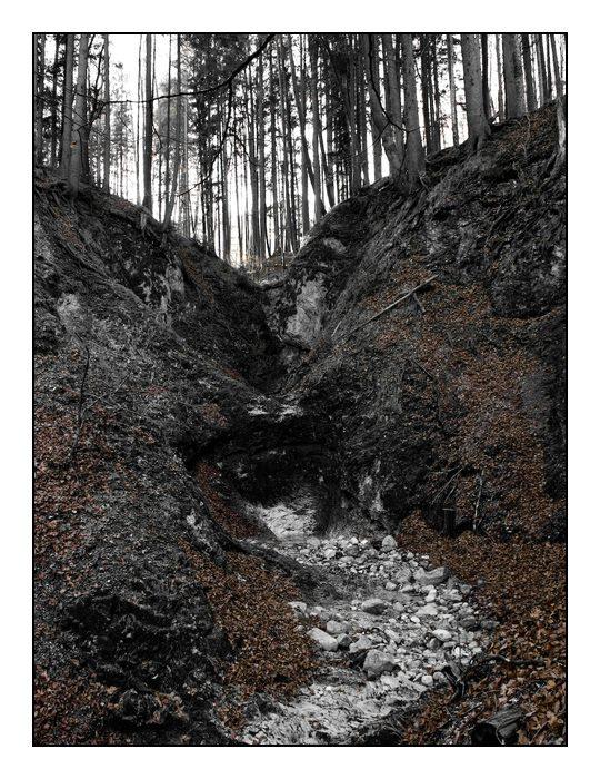 Trockener Bach - Herbst