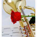 Trompete & Rose