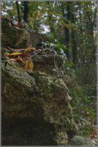 Tronche de pierre