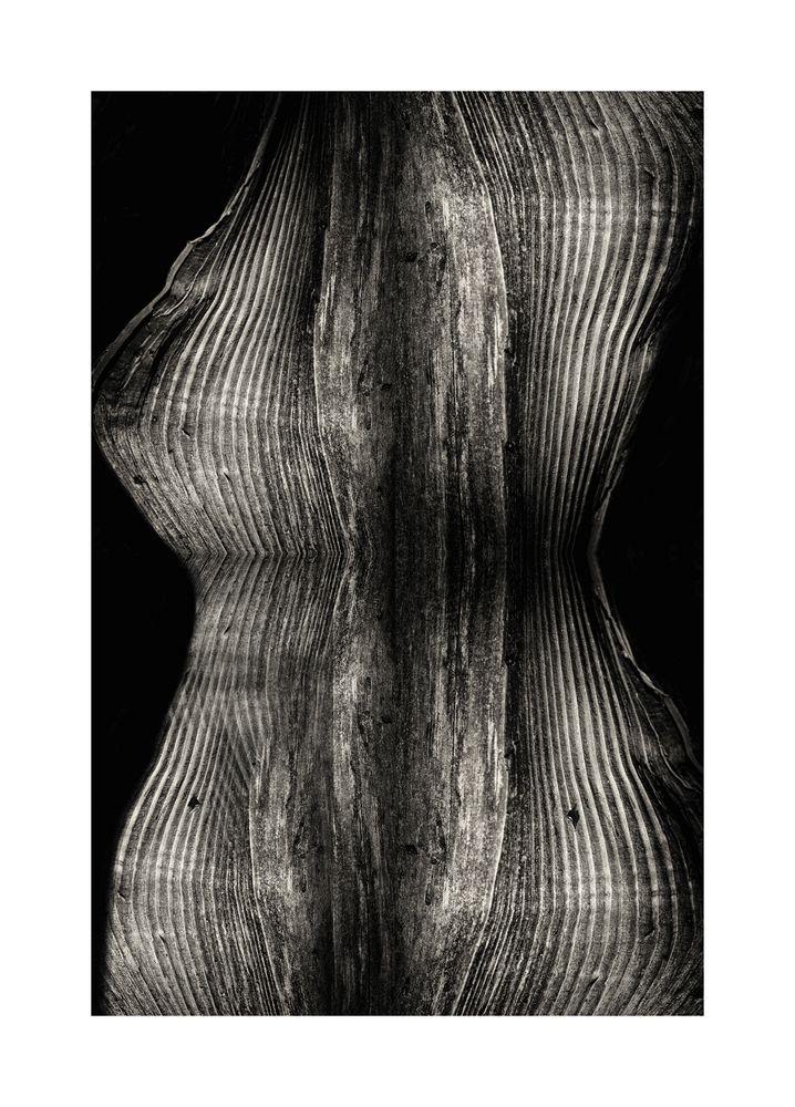tronco di donna