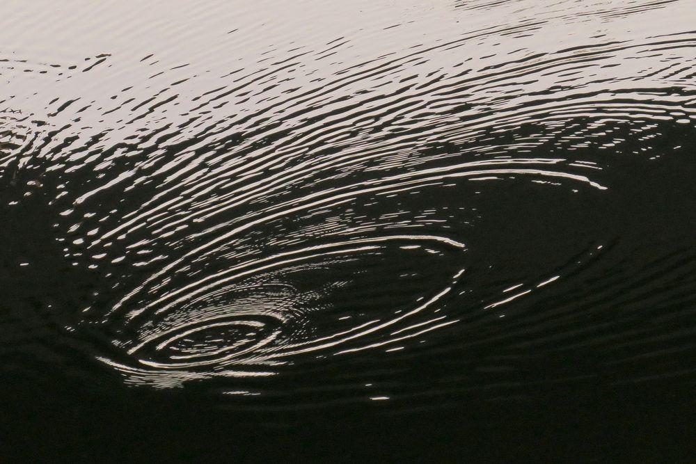 Tropfen im Fluss