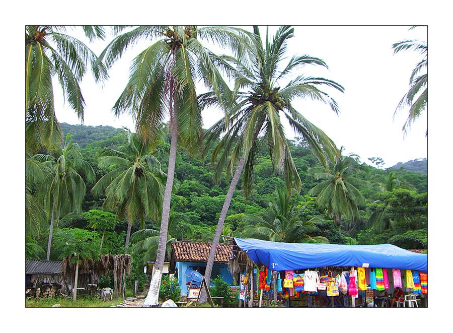 Tropical México