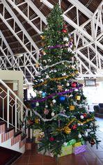 ...tropische Weihnachten...