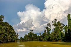 Tropische Wetterfront