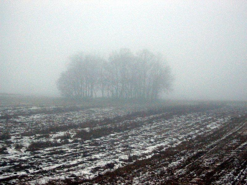 Trübes Wetter am Morgen