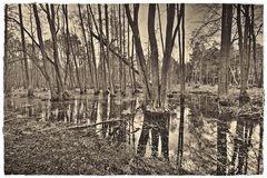 Trügerisch hängt über den Menschen die Zeit und rollt mit sich dahin des Lebens Flut.