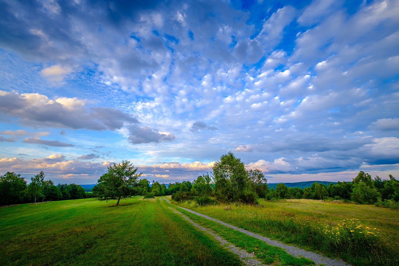 Trupbacher Heidehimmel
