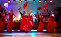 TS Aire Flamenco - Flamenco Show (2)
