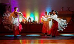 TS Aire Flamenco - Flamenco Show (4)