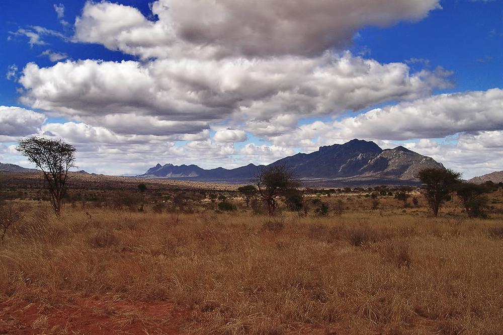 Tsavo Nationalpark...