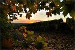 tschüss ... Herbst