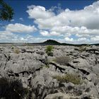 Tsingys von Ankarana