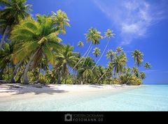 Tuamotu Dreaming