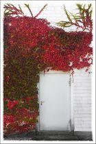 Tür vom Herbst...