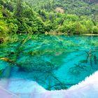 Türkis-grüne Reflektion... China Sichuan
