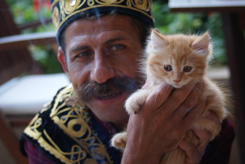 Türkischer Katzenfreund