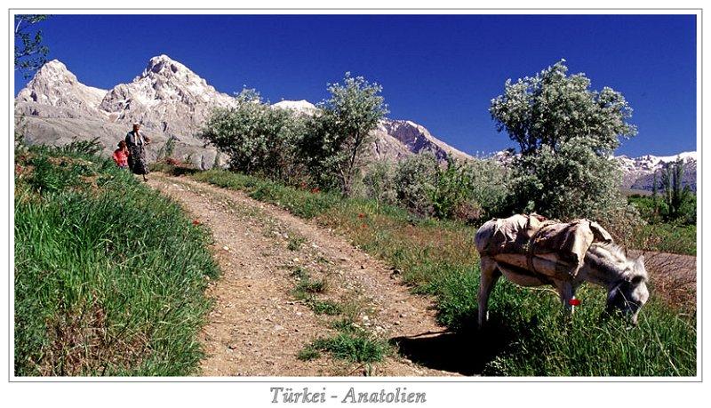 türkisches Hochland