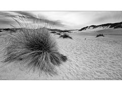 Tufts and dunes