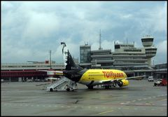 "TUIfly ""Halle"" in TXL"