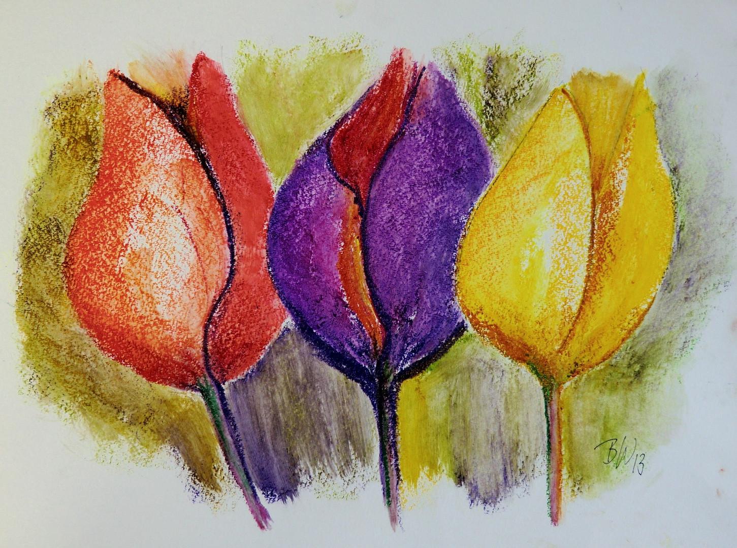 Tulpen 2. Version