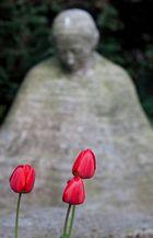Tulpen auf Melaten
