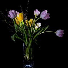 Tulpen im Glas