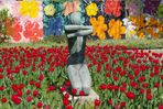 Tulpen im Grugapark
